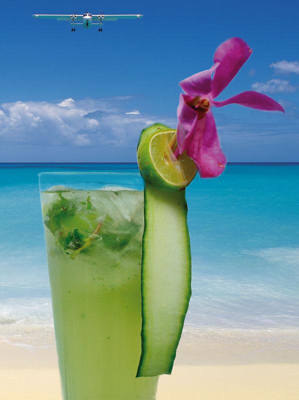 Cucumber Mokito - summertime cocktails - Ritz-Carlton South Beach