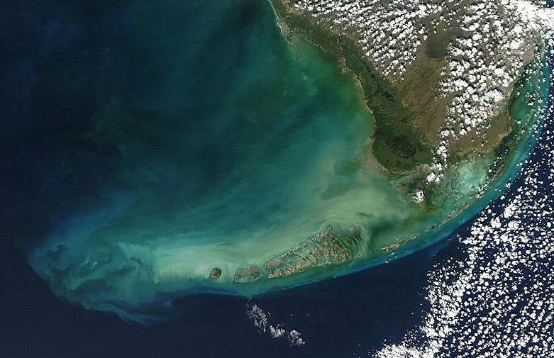 The Florida Keys - lionfish - invasive species Florida - photo cred: NASA