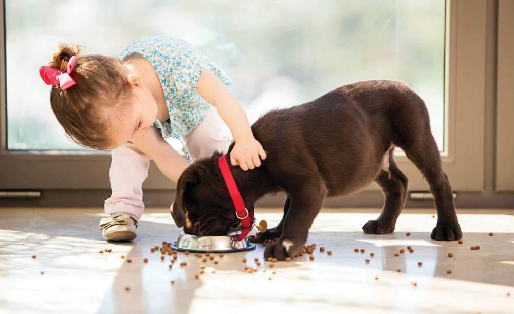 Kids and Dogs - Bassett Medical Center - Reduction in Anxiety and Boosted Immune System - benefits of dog ownership in children