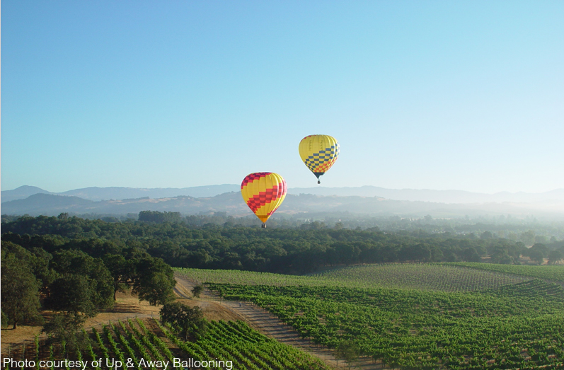 Up & Away Ballooning - hot air balloon tours in Sonoma County