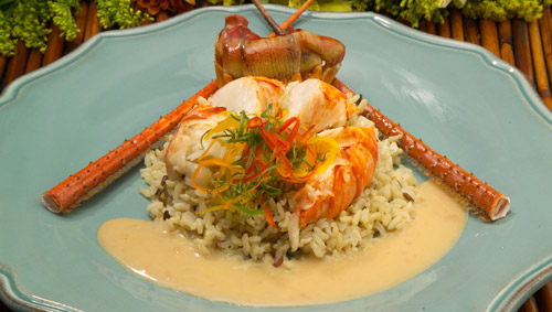 Creamy Lobster Medallions - Florida spiny lobster recipes - Chef Justin Timineri Florida Department of Agriculture and Consumer Services