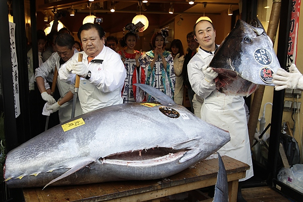 Giant bluefin tuna auctioned for $736,000 in Japan