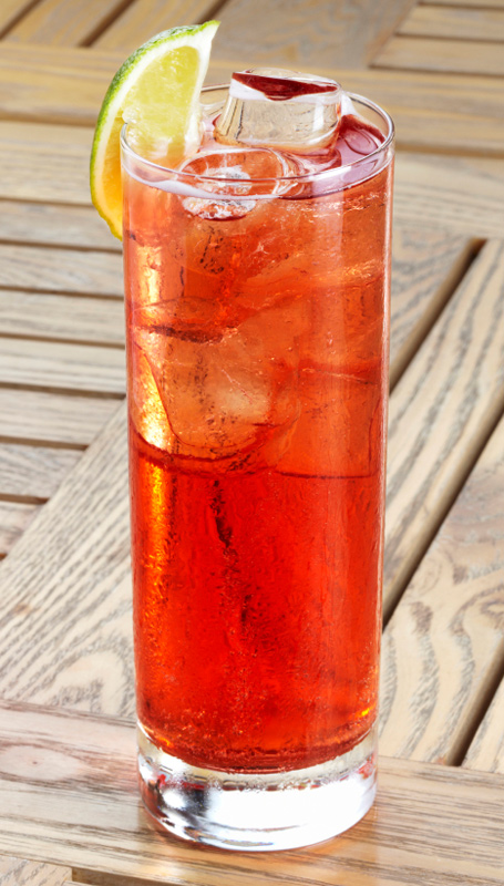 Cranberry Jalapeno Margarita - Thanksgiving leftovers cocktail