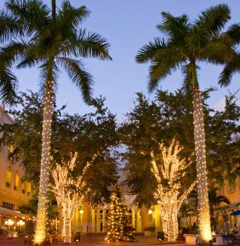 Naples, FL winter fantasyland