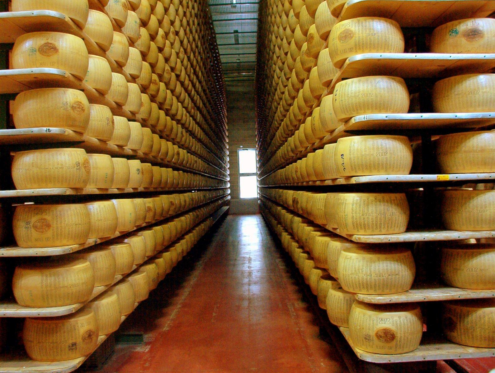 Parmigiano Reggiano aging in Italy