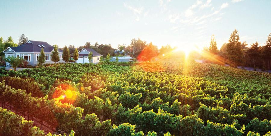 Paul Hobbs and Crossbarn, Sonoma - winery