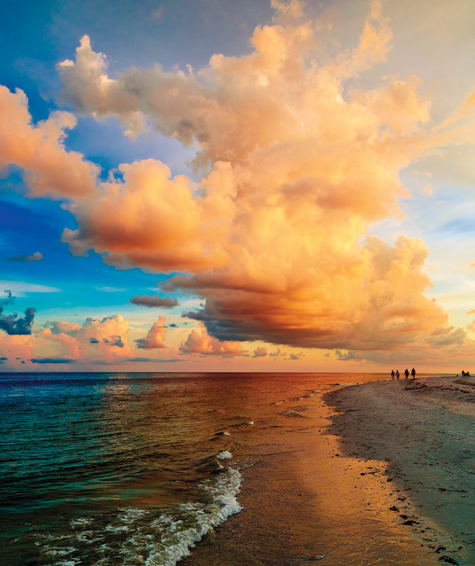 What To Do On Sanibel Captiva Islands