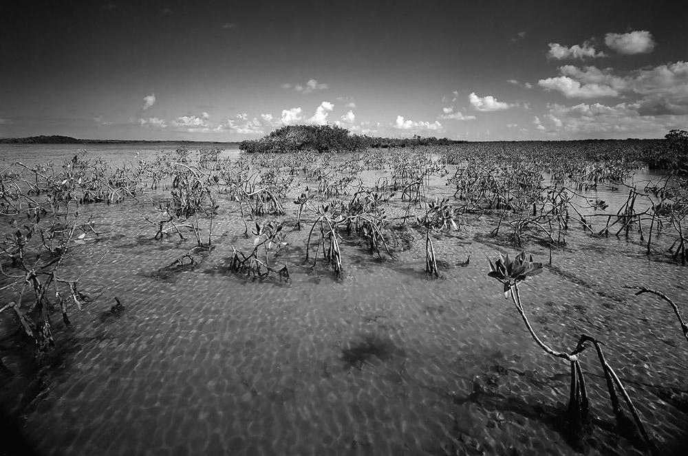 Biscayne-Bay-4---Biscayne-National-Park-6x10