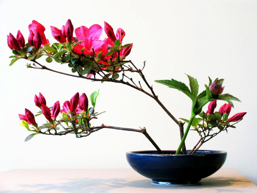 ikebana-2004-desiree-castelijn-beautiful