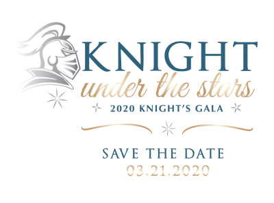 Knight under the Stars