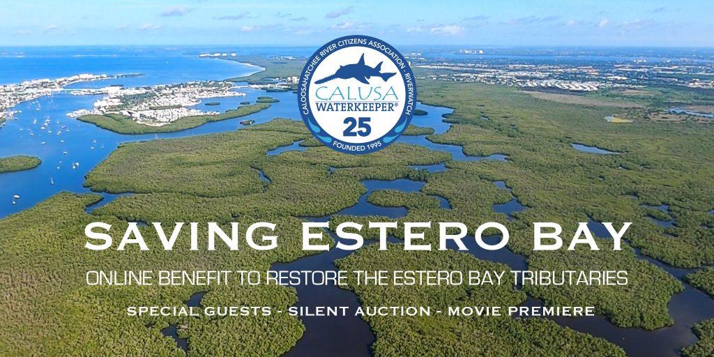 Saving Estero Bay