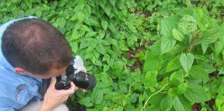 """Virtual"" Essentials of Digital Photography Workshop"