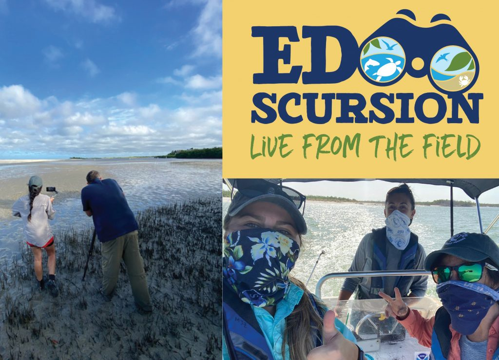 EDscursions Virtual Field Trips