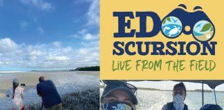 EDscursions Virtual Field Trips