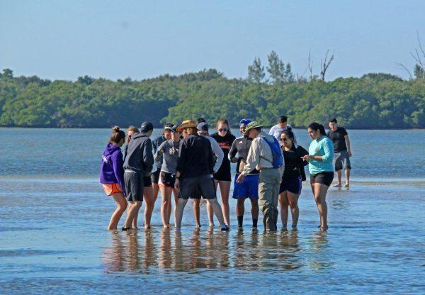 Marine Science Day Camp