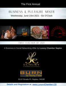 Business and Pleasure Mixer
