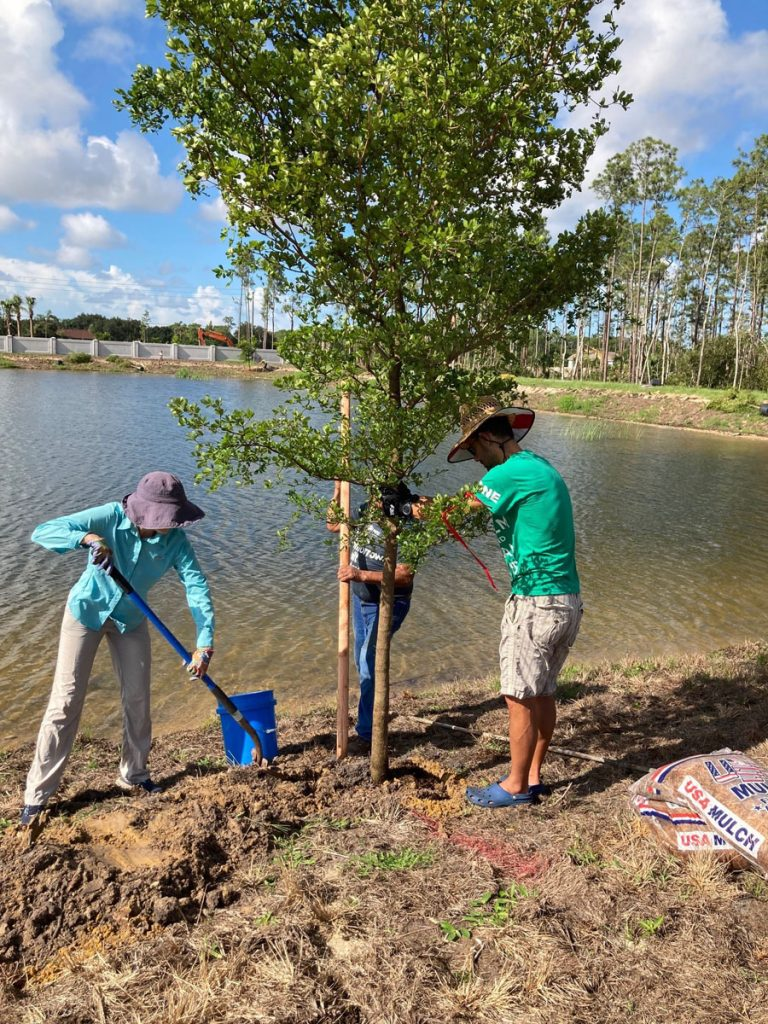 Volunteers planting trees in Whitaker Woods. Images courtesy of Growing Climate Solutions