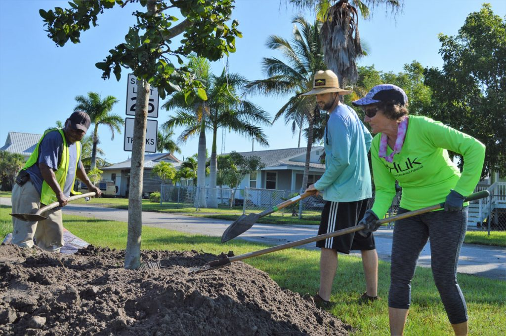 Staff and volunteers help with tree-planting project in Everglades City